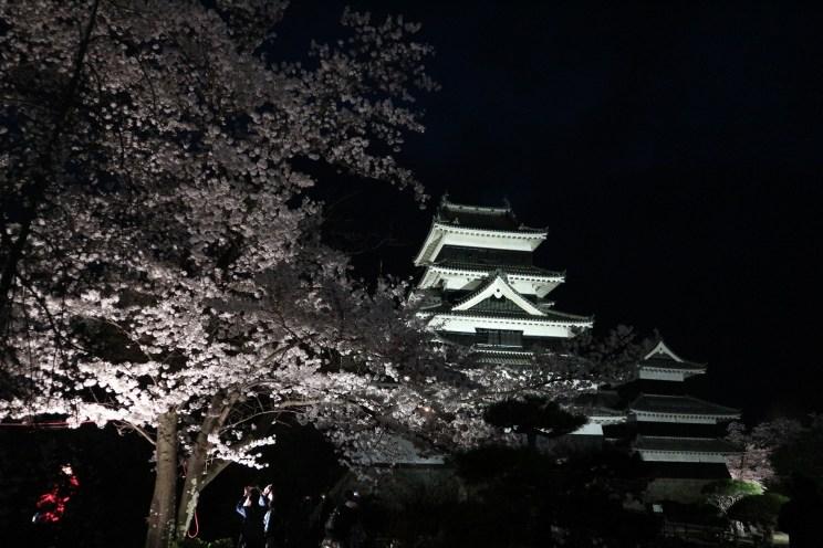 第20回 国宝松本城「夜桜会」